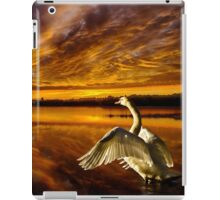 Swan Lake iPad Case/Skin