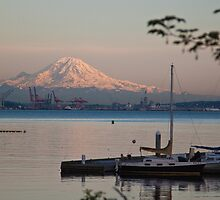 Mt. Rainier from Seattle by Barb White