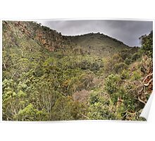 Giants View - Morialta Conservation Park. Poster