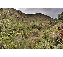 Giants View - Morialta Conservation Park. Photographic Print
