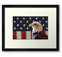 Bald Eagle in front of the American Flag Framed Print