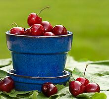 Cherry Supreme by Trudy Wilkerson