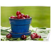 Cherry Supreme Poster