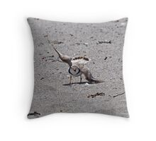 Piping Plover - Browken Wing Display Throw Pillow