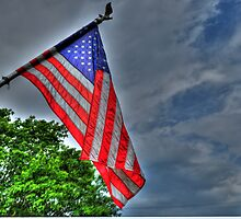 I pledge allegiance... by Joel Aquino