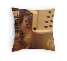 PEEK-A-BOO#2 Throw Pillow