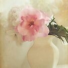 Rose and peonies by SylviaCook