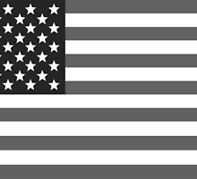 American flag USA freedom greyscale black and white by dopebubble