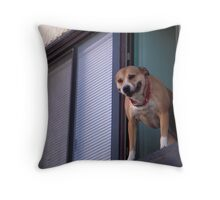 Dog in Window 2 Throw Pillow