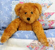 Bear in bed by faithimages