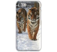 Tigers in the Snow iPhone Case/Skin