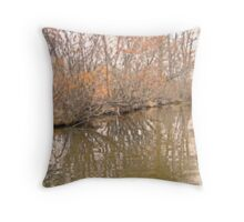 rippled time Throw Pillow