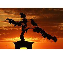 Zen Sunset Photographic Print