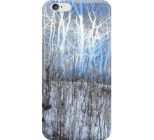 These Wintry Trees iPhone Case/Skin