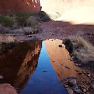 landscapes #156,  Kata Tjuta reflections by stickelsimages