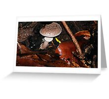 Mushroom hide out  Greeting Card