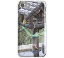The snow begins to fall iPhone Case/Skin