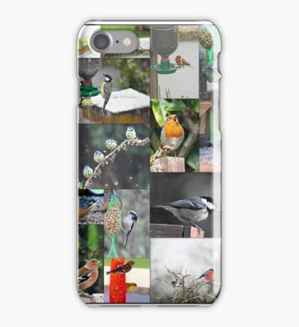 A selection of small birds iPhone Case/Skin
