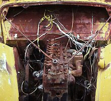 """Yellow Skeleton"" ~ Abandoned Transport Museum, Seacliff, NZ"" by stillpoint"