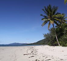 Life's a Beach by Tainia Finlay