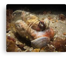 Pickled Octopus. Canvas Print