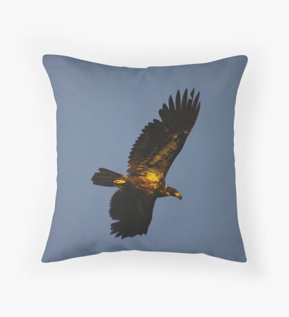 Sunrise Flight Throw Pillow