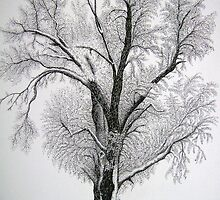 WINTER TREE by smitty01