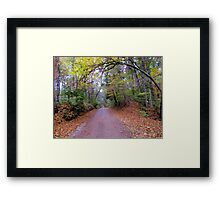 Road to the unknown. Framed Print