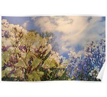Cattus Island   /  Flowering Trees    Poster