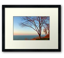Sunset with the tree in setting sunlight. Framed Print