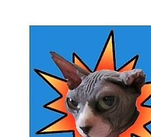 Hairless cat POW!! by damasktattoo