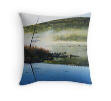 Silent Sunrise Throw Pillow
