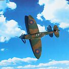Spitfire by Marie Brown ©