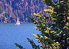 Idyllic Sailboat View by Tamara Valjean