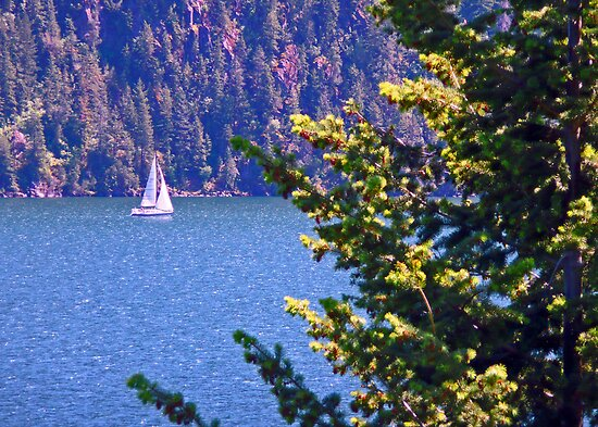Idyllic Sailboat View by Tamara Valjean