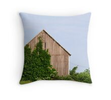 Rural reclamation Throw Pillow