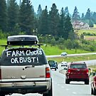 Farm Chicks or Bust by Tamara Valjean
