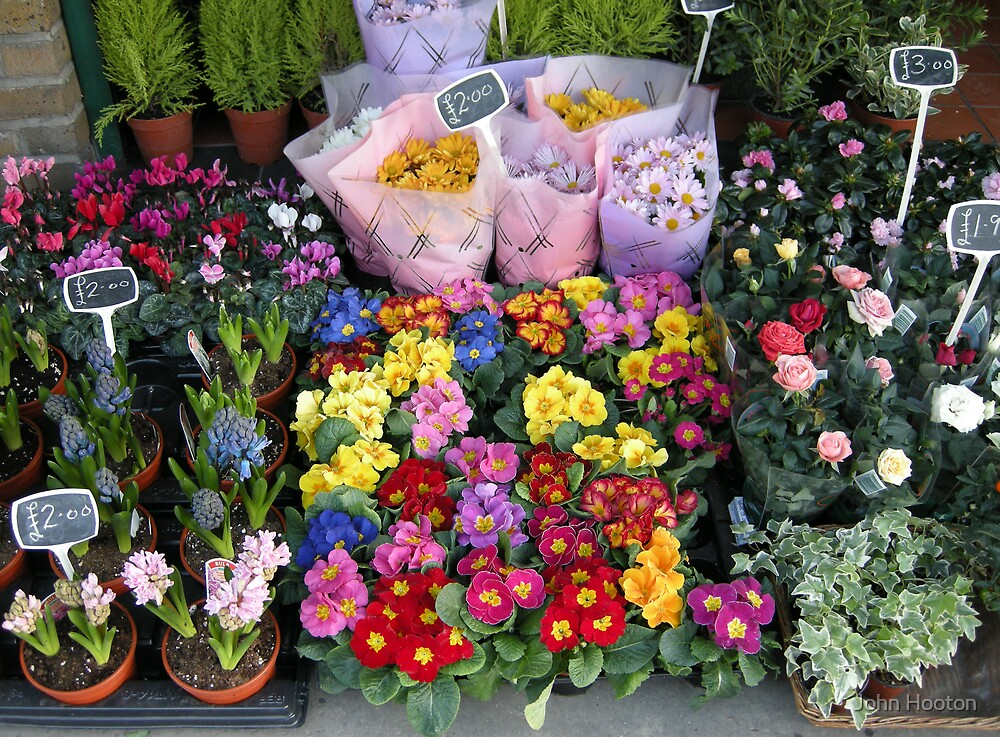 Flower Shop by John Hooton