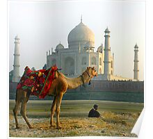 Taj Mahal-View from Yamuna River End Poster