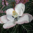 magnolia flower acrylic painting by derekmccrea
