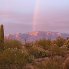 Rainbow Over the Catalinas by Michael Cohen