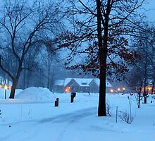 A winter evening. by Dipali S