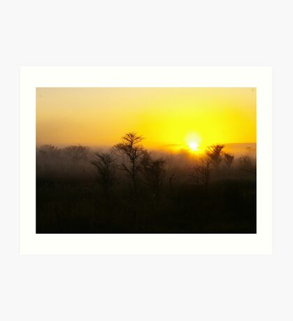 Sunrise over the Waterberg Art Print