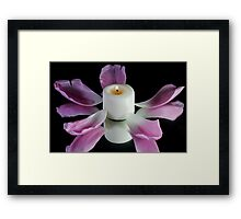 A candle with tulip petals. Framed Print