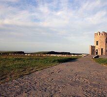 O'Briens Tower by John Quinn