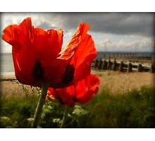 And We Remember Them Photographic Print