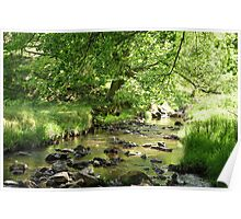 The Beck in Primrose Gill Poster
