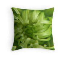 break through ... Throw Pillow