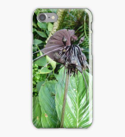Tacca chantrieri or Bat Lily iPhone Case/Skin