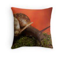 Slow & Steady... Throw Pillow